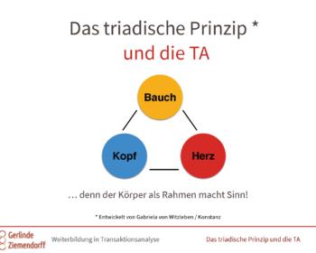 Das triadische Prinzip und die TA